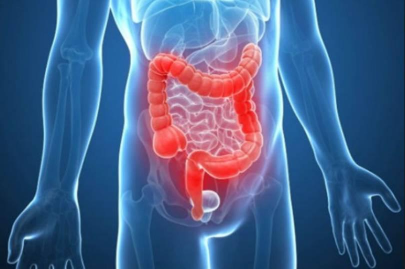 Čišćenje crijeva po metodi Dr Šulca